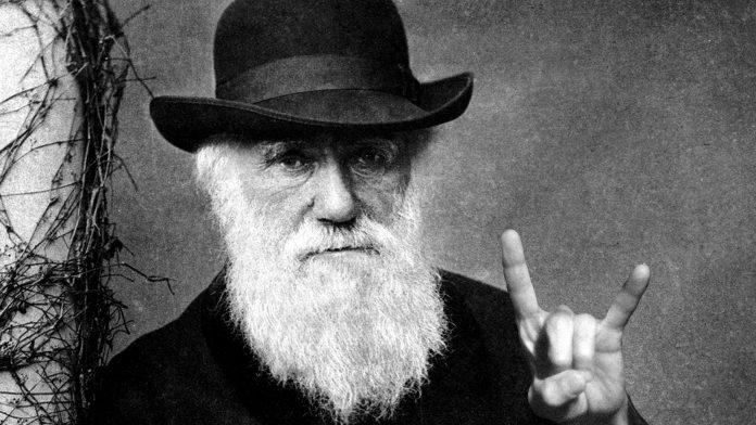 Δαρβίνος, Θεωρία της Εξέλιξης, σχολείο